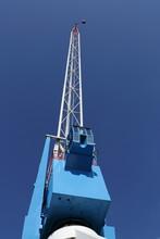 Tall Blue Crane