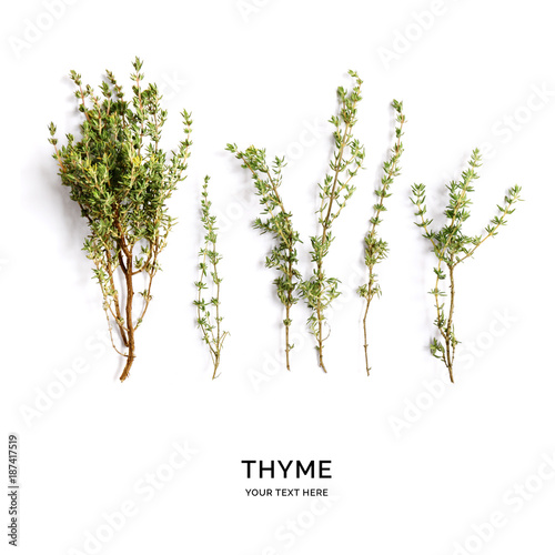 Fotografie, Obraz  Creative layout made of thyme