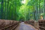 Fototapeta Bamboo - 京都府向日市 竹の径