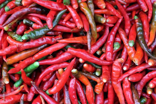 Wall Murals Hot chili peppers Fresh Red shili