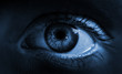 Human eye. Blue toned. Macro shot.