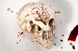 Murder scene, genocide and halloween concept with a skull covered in blood isolated on white background with copy space