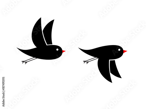 Photo flying small black birds