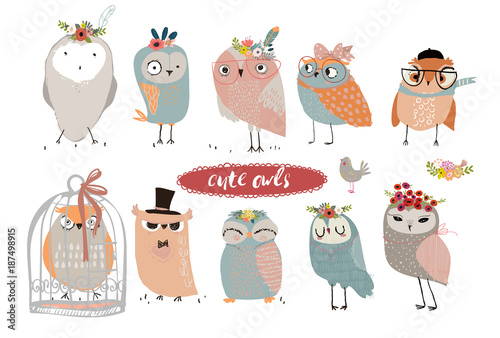 Photo Stands Owls cartoon set with cute owls