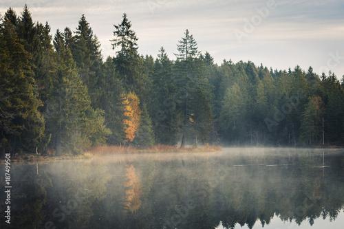 Poster Morning with fog Etang de la Gruère, dans le Jura suisse