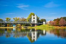 Suspension Bridge In Fall