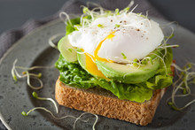 Breakfast Toast With Avocado, ...