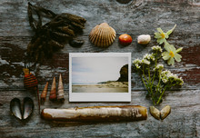 Mixed Media Flat Lay Featuring Coastal Finds And An Instant PhotographA Beach.
