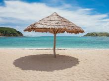 Reed Beach Umbrella Creating S...