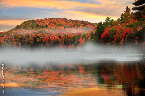 Aluminium Prints Dark grey Morning fog in rural Vermont in autumn time