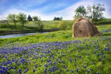 Texas Farmland With Creek, Hay...