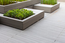 Outdoor Planter With Green Planting