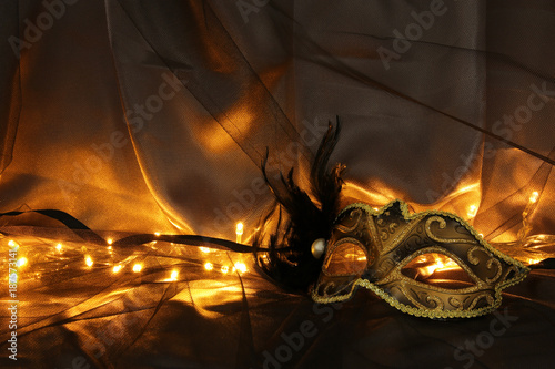 Image of elegant gold and black venetian mask over tulle background.