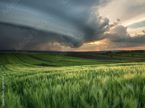 Fotobehang Landschap Cyclone on the field. Beautiful natural landscape in the summer time