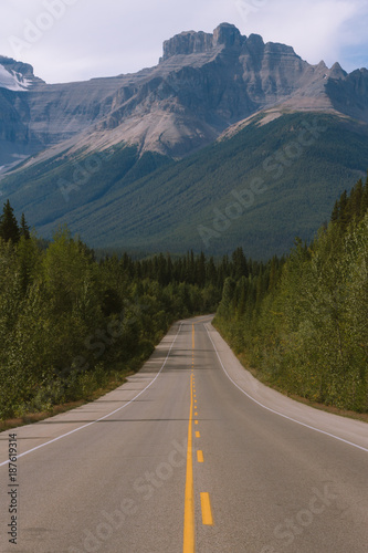 Foto op Aluminium Bergen Scenic Icefields Parkway highway in Rocky Mountains, Alberta, Canada on sunny day