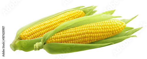 Fényképezés Corncobs or corn ears isolated on white background