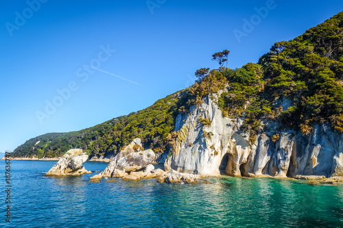 Canvas Prints New Zealand Creek in Abel Tasman National Park, New Zealand