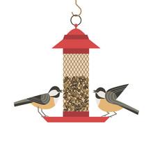Cute Small Bird Poster. Comic Flat Cartoon. Minimalism Simplicity Design. Winter Robin, Chickadee Birds Feeding By Sunflower Seeds In Feeder. Template Birdwatching Card Background. Vector Illustration