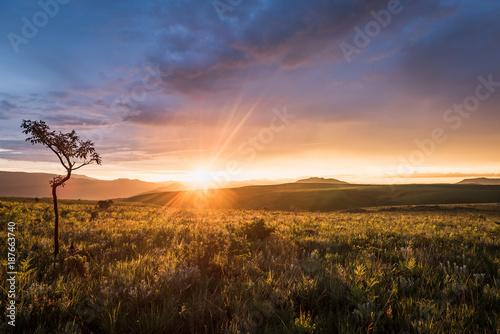 Acampados ao pôr-do-sol no Morro do Moco, província do Huambo,. A montanha mais alta de Angola.