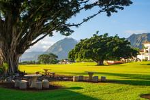 Beautiful Park With University...