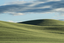 Scenic View Of Palouse Hills A...