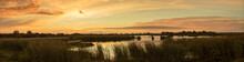 Sunset In The Florida Everglades Panorama