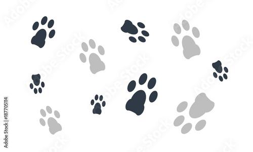 Animal Paw Dog Walking Foot Print Wallpaper Vector