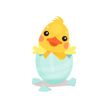 Cute Little Yellow Duck Chick Character Hatching From The Egg Cartoon Vector Illustration