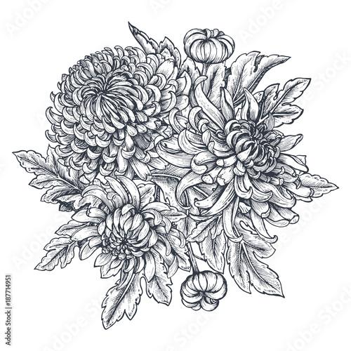 Cuadros en Lienzo Vector bouquet with hand drawn chrysanthemum flowers