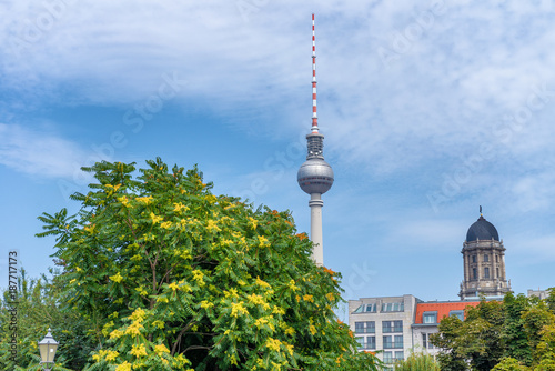 Berlin TV Tower among city trees, Germany Poster