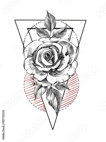 Hand Drawn Line Art Roses In Graphic Style Feminine Tattoo Sketch