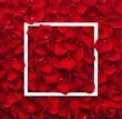 Frame of red rose petals