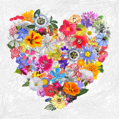Fototapeta Ogrody Colorful Heart made with Mixed Flowers