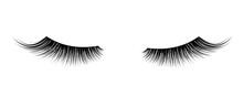 Black False Eyelashes. Mascara...