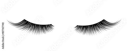 Fotografija Black False eyelashes. Mascara single decorative element.
