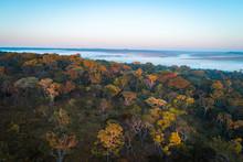 Floresta Virgem De Miombo Ao Longo Do Cubango De Madrugada Vista Do Ar. Angola