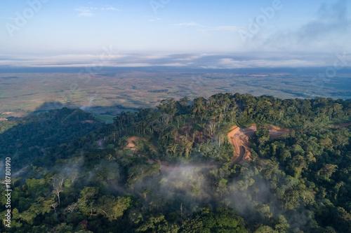 Tuinposter Weg in bos Caminho numa floresta tropical de escarpa na província do Záire, Angola