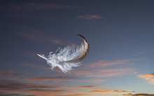 Feather Floating In Sky At Sunset