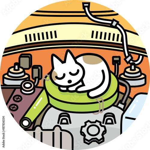 Keuken foto achterwand Cars 猫ばんばん
