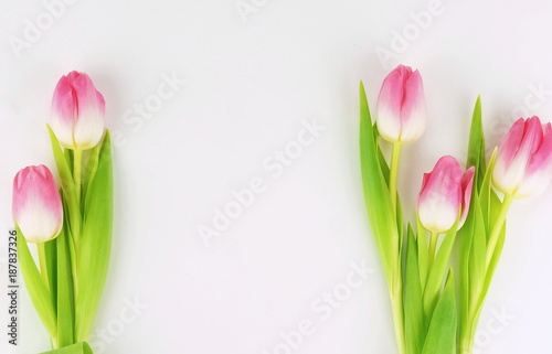 Fototapety, obrazy: a bouquet of beautiful pink tulips on a white background.top view. Copy space. Holiday concept
