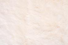 Shaggy Fur Texture
