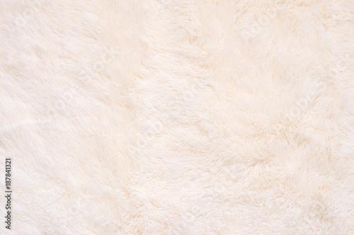 Canvastavla  Shaggy fur texture