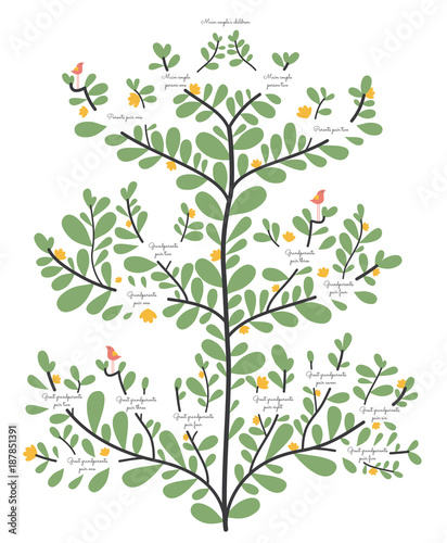 Family tree, ancestry line elegant organic illustrated vector template Canvas Print