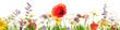 Wildblumen aus Mohn, Arnika und Klee in einer Wiese, Panorama