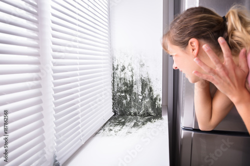 Obraz na plátne Shocked Woman Looking At Mold On Wall