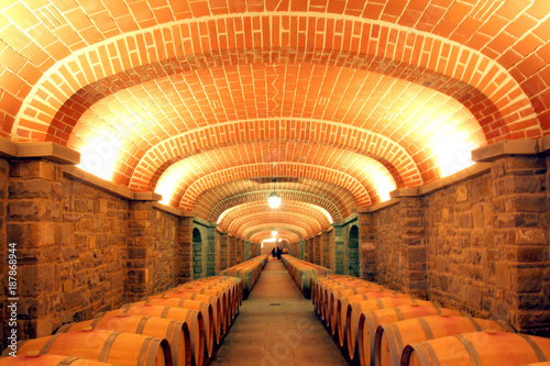 Italia, Toscana, Arezzo, il villaggio de Il Borro, una cantina e botti di invecchiamento vino.
