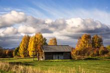 View Of Cabin House Surrounded By Trees In Autumn