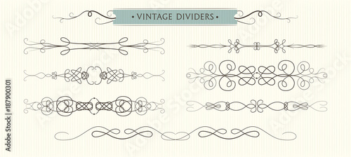 vector hand drawn flourishes dividers graphic high quality design