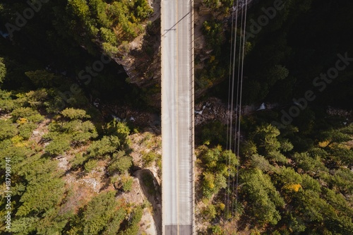 Spoed Foto op Canvas Brug Bridge passing over the forest