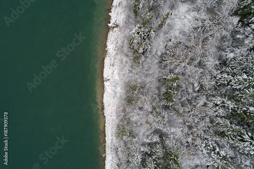 Staande foto Zee / Oceaan Snow covered coniferous forest along the sea coast
